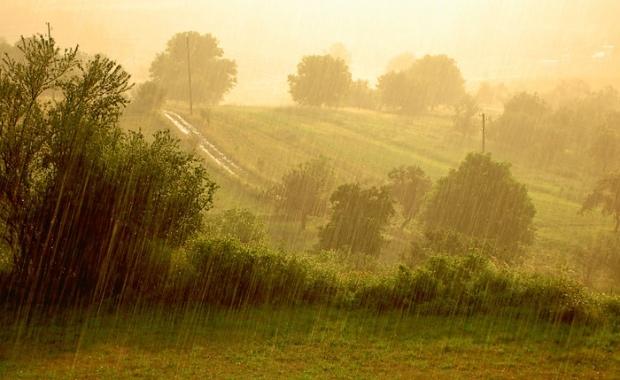 Най-голямо количество дъжд в Пазарджишко е измерено в района на село Цветино – 31 л/кв. м