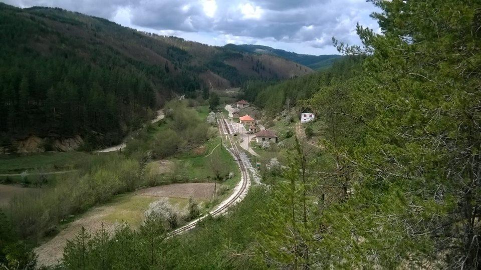 Флорово е било старото име на село Цветино