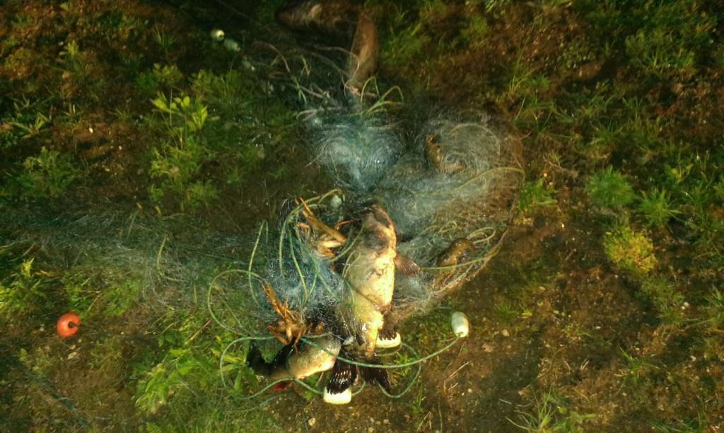 Акция за бракониери язовир Батак