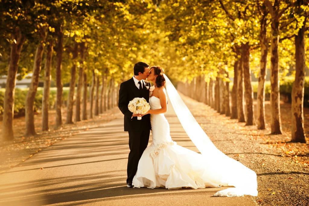 27 720 души са се оженили през миналата година в България, 10 483 са се развели
