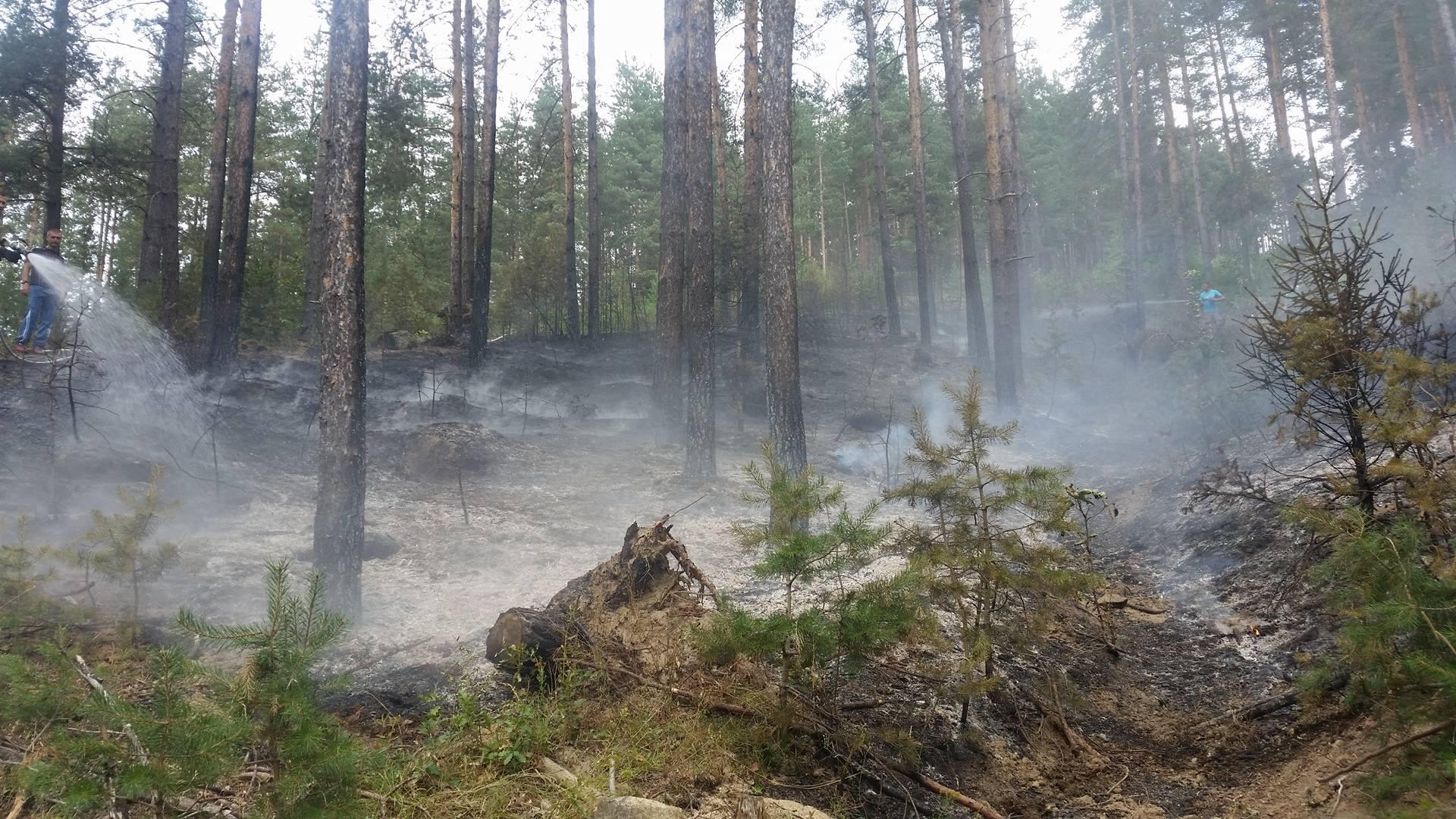 Полицейско производство е образувано спрямо жена от Велинград за причинен от нея по непредпазливост пожар засегнал и горски площи
