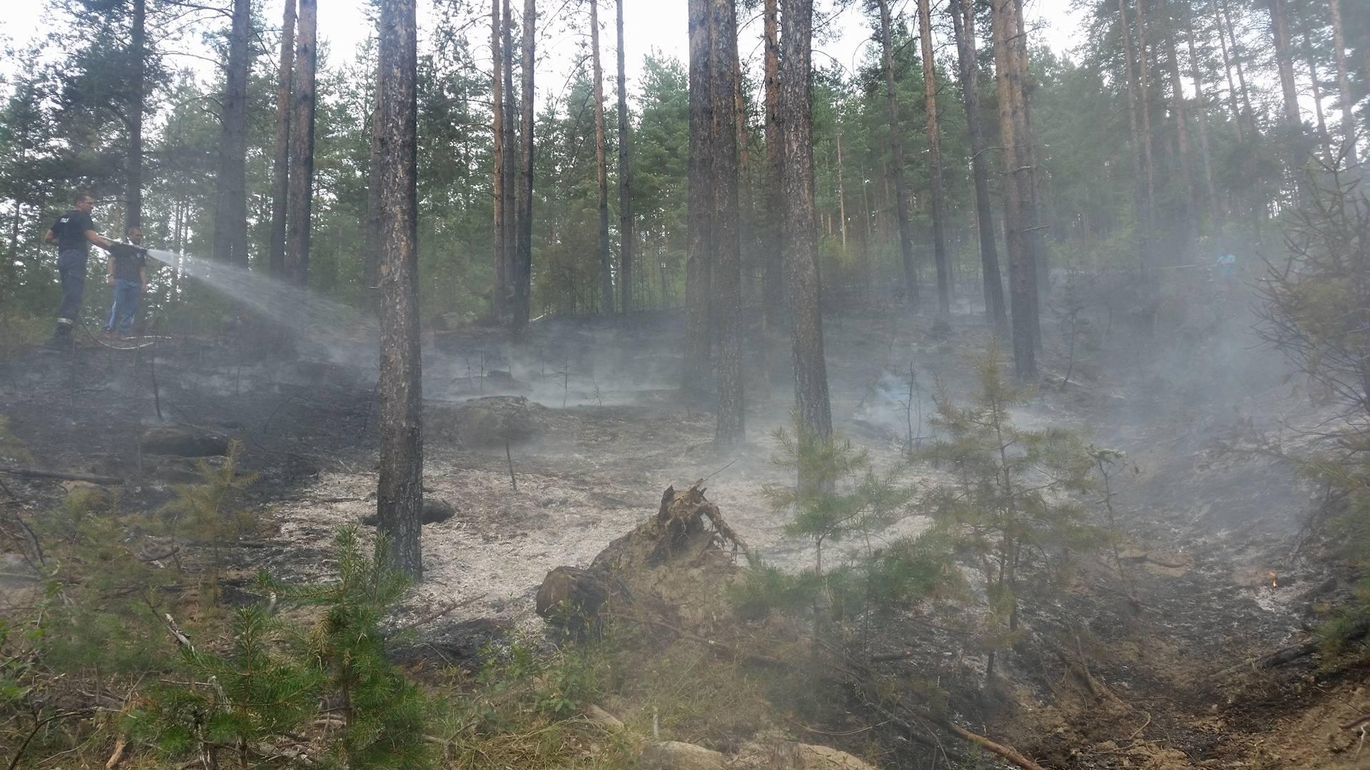 Наш читател съобщи за голям пожар в село Абланица