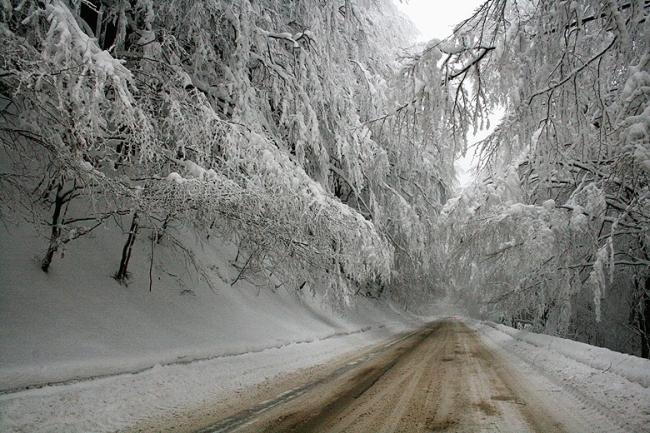Товарните автомобили трябва да са без ремаркета и полуремаркета по пътя Батак-Доспат