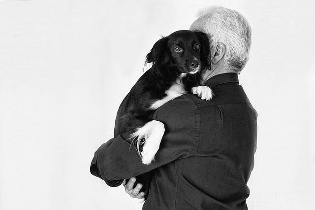 Днес един изключително мил възрастен господин дари храна за бездомните кучетата на Велинград