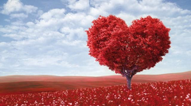 Свети Валентин – 14 Февруари имен ден празнуват…..