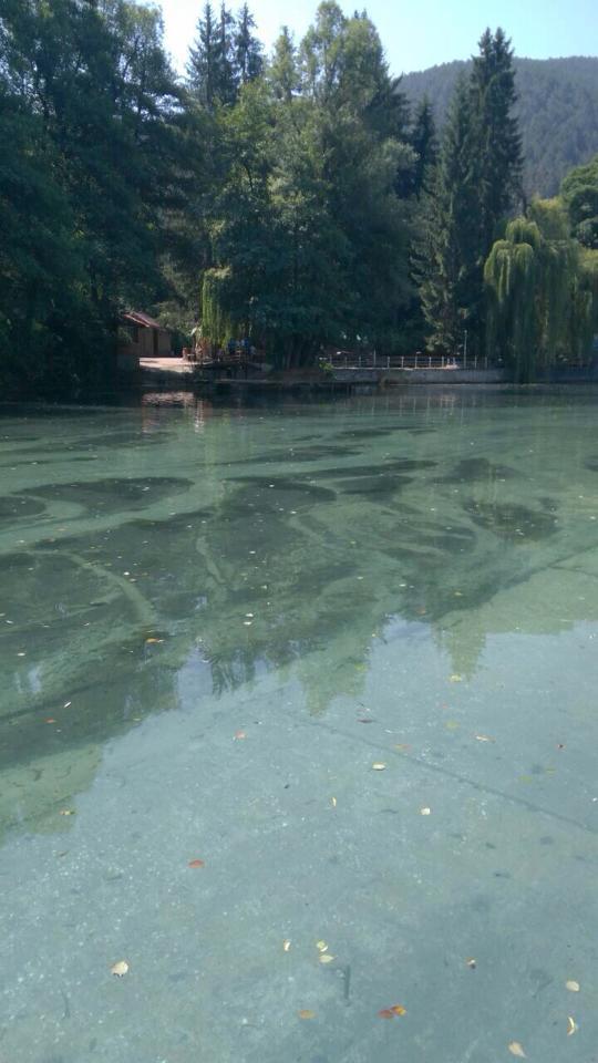 Община Велинград почисти долното езеро на Клептуза