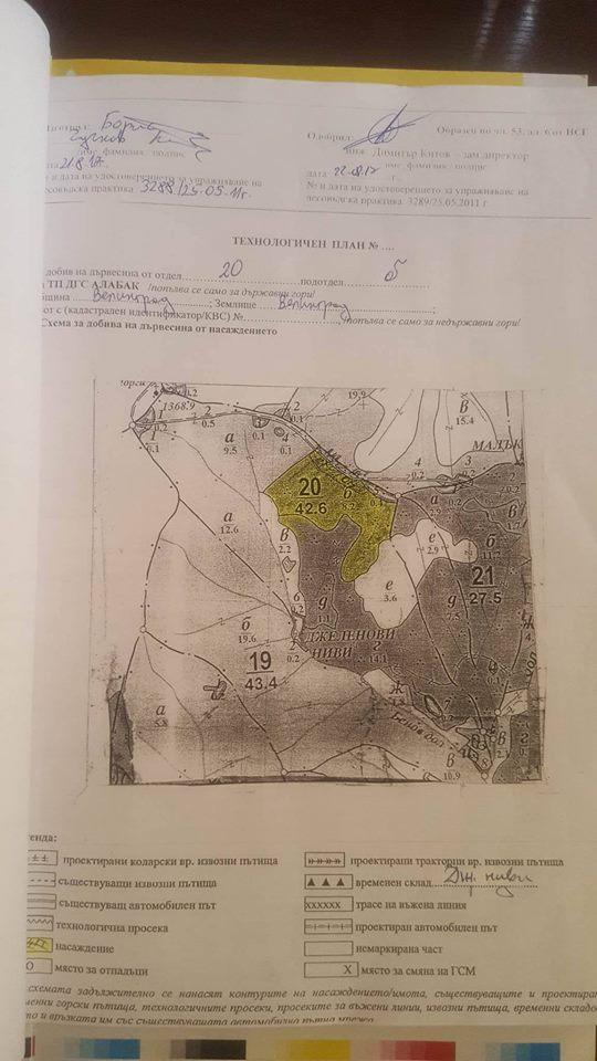 Кметът г-н Коев направи изявление и за сечта на дървета под връх Острец