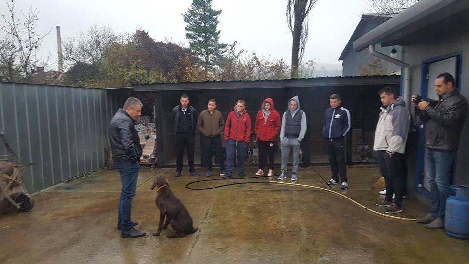 Ловното куче – партньор и верен помощник за ловеца