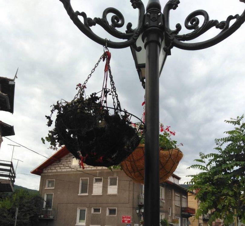 Вандали палят цветарници във Велинград