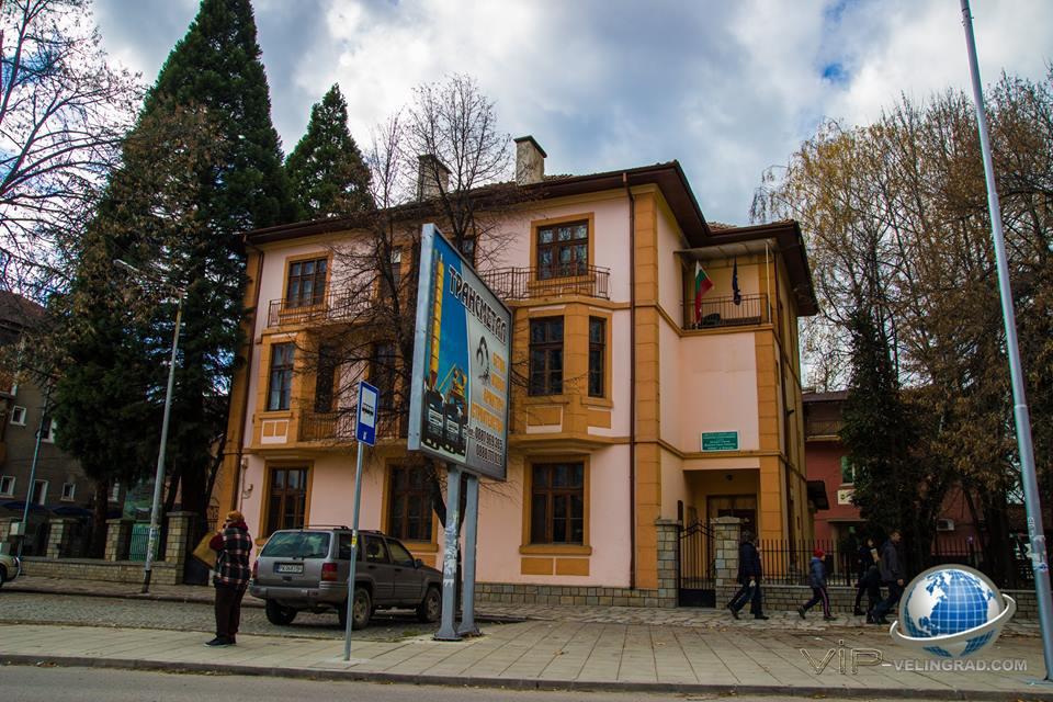 Обвиниха директора на горско стопанство във Велинград заради незаконно добита дървесина