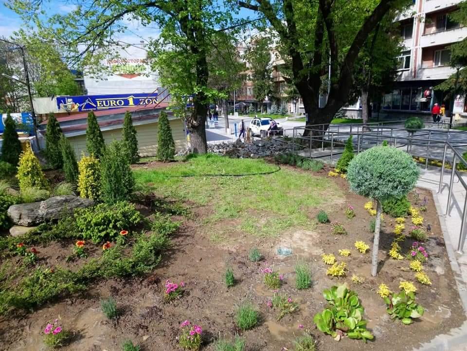 Ново озеленяване ще краси централния площад във Велинград