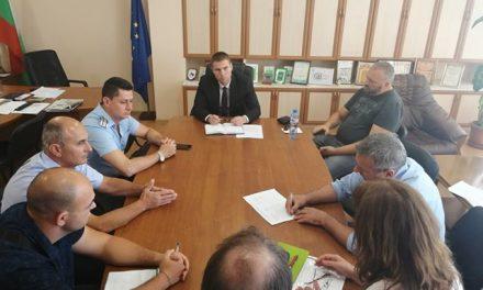 Областният управител разпореди спешни мерки срещу безстопанствените животни по пътищата в област Пазарджик