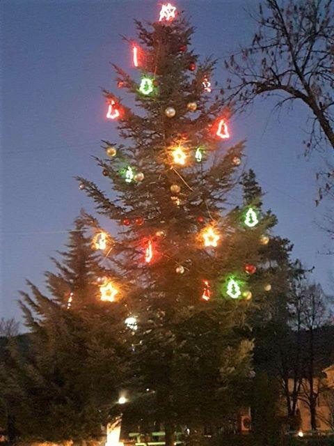 С песни и стихчета под дъжда грейна коледната елха в Ракитово