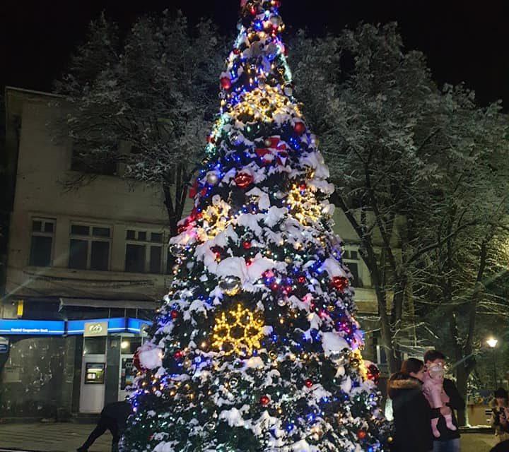 Светлините на Коледната елха във Велинград вече светят празнично