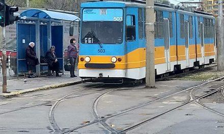 """Мария Панчова: За прегазеното от трамвай куче, което се бори за живота си и ще се промени ли нещо в """"прекрасната"""" ни България!"""