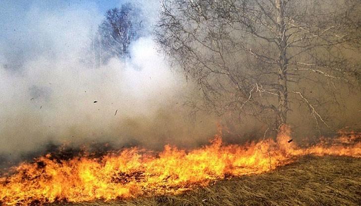 Продължават да зачестяват случаите на запалени сухи треви в частни имоти, ниви, както и пожари в контейнери с отпадъци