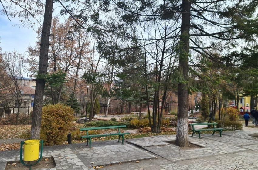 Кастрят дърветата в паркa на центъра в гр. Ракитово
