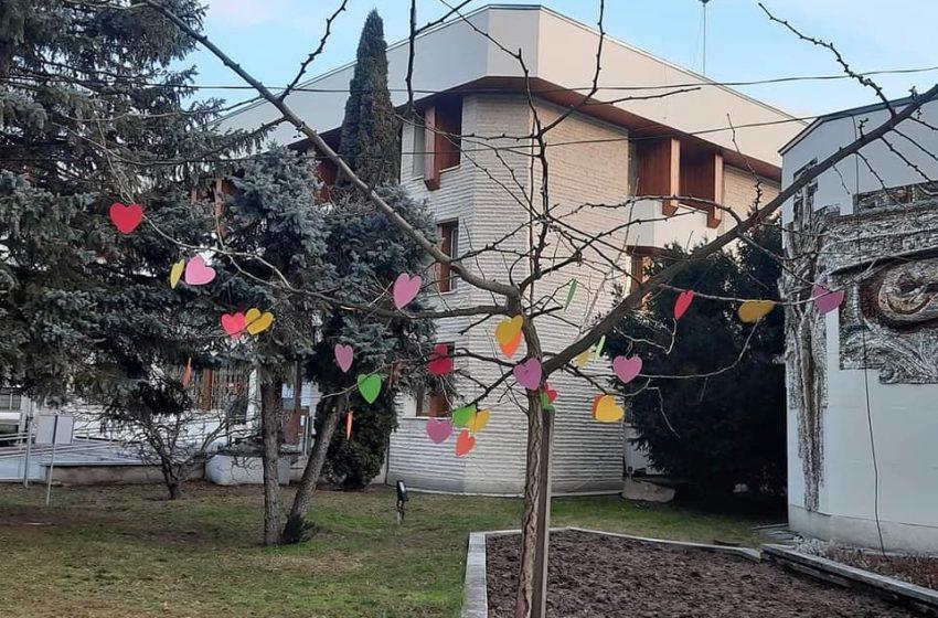 ЦПЛР-ОДК Велинград украсиха със сърца дръвчето пред общината за предстоящия Св. Валентин