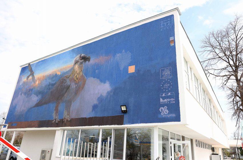 Мащабен графит на символа на българската природозащита брадатия лешояд вече ще посреща в Пловдив