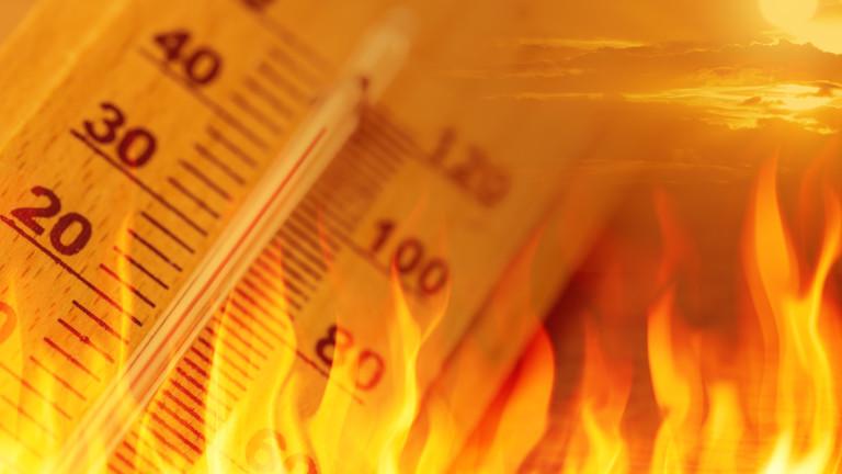 Как да се предпазвате от жегите