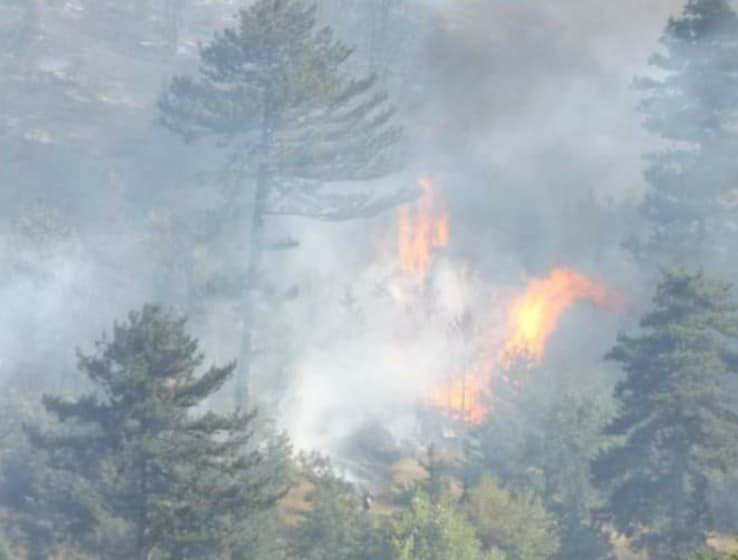 Разкрити са деца причинили пожар в Анезица